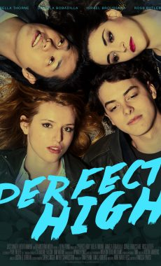 Perfect_High_Poster